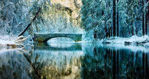 bridge_081228_1J_0583.jpg